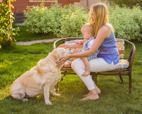 Family Relaxing In Garden With Pet Dog.